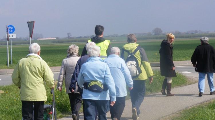 Elke Stap Telt - een 12 weeks wandelprogramma op maat afbeelding nieuwsbericht
