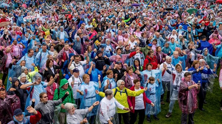 Ruim 300 wandelaars Nationale Diabetes Challenge met de bus naar Amsterdam afbeelding nieuwsbericht