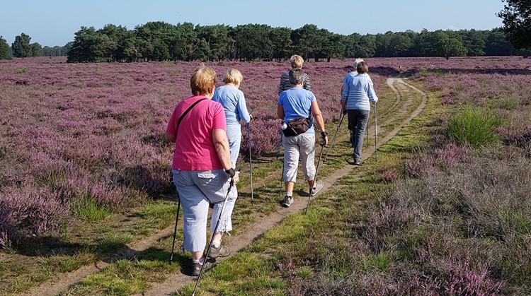 25 september: kennismaken met Nordic Walking afbeelding nieuwsbericht