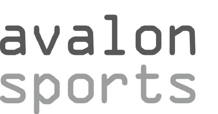 Boogschieten bij Avalon-Sports. afbeelding nieuwsbericht