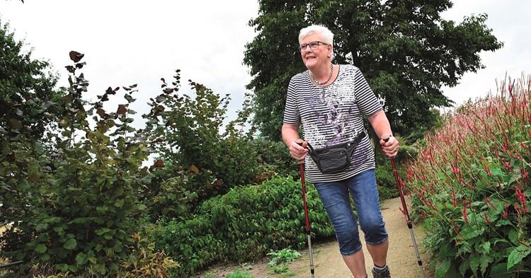 26 Wandelaars van Wandelchallenge Doesburg sluiten 20 weken wandelen af in Den Haag afbeelding nieuwsbericht