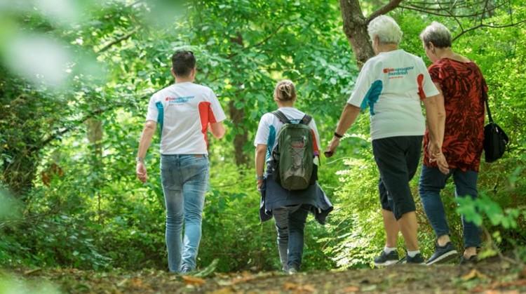 Start wandelgroepen Nationale Diabetes Challenge 2019 in de regio Midden Brabant afbeelding nieuwsbericht
