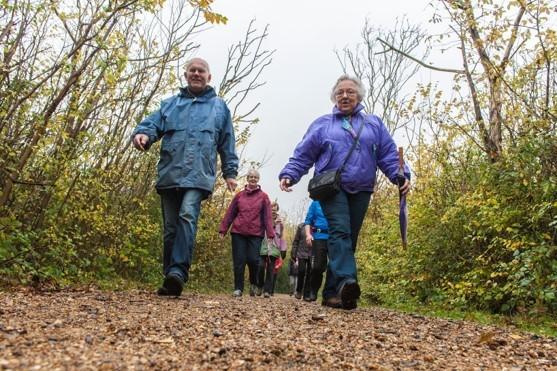 Wandelprogramma: 'Elke stap telt' voor 55+ start as donderdag afbeelding nieuwsbericht