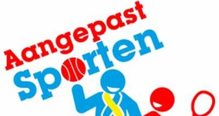Sportdag aangepast sporten in Maassluis afbeelding nieuwsbericht