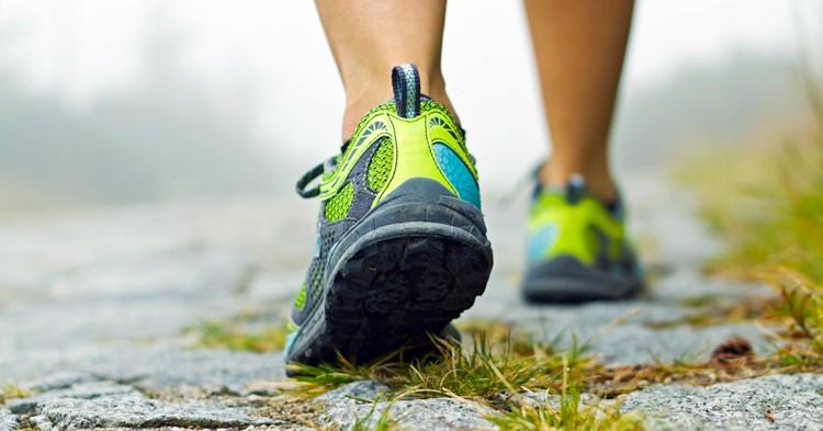 St. Nicolaas wandeltocht met 5km en 10km groepswandeling afbeelding nieuwsbericht