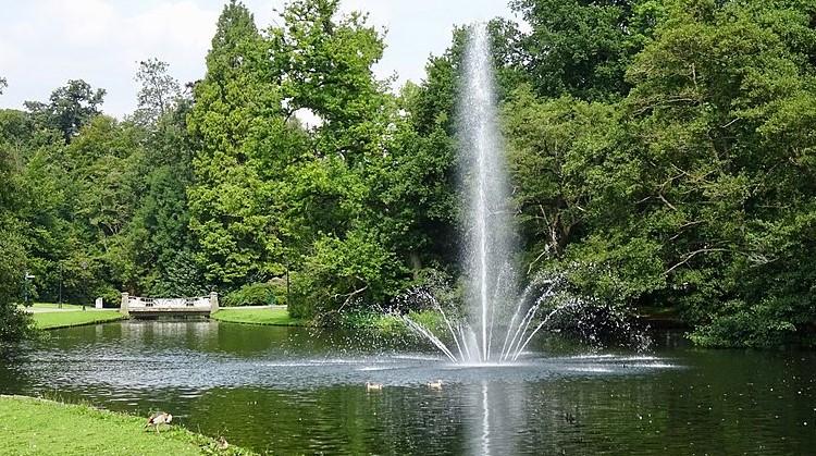 Rolstoelwandeling door Sonsbeekpark in Arnhem afbeelding nieuwsbericht