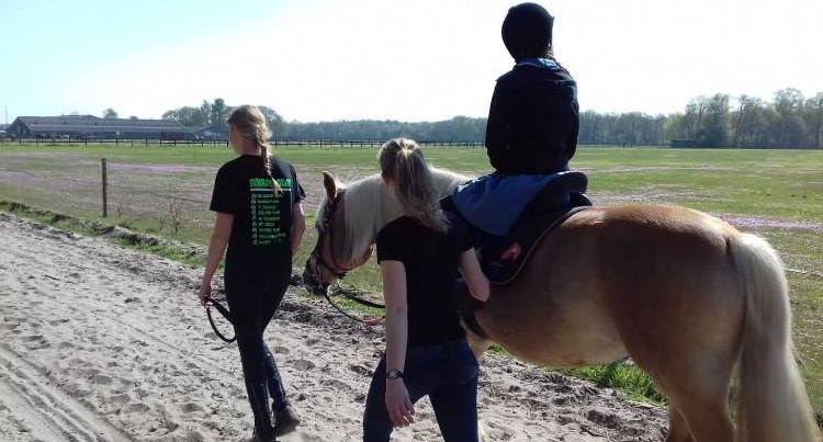 """""""Ervoor zorgen dat iedereen met plezier kan paardrijden"""" afbeelding nieuwsbericht"""
