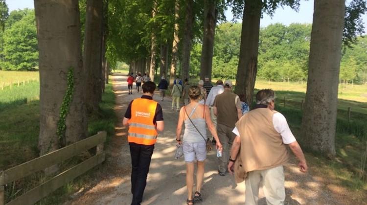 Wekelijks samen wandelen met de Wandel Challenge afbeelding nieuwsbericht