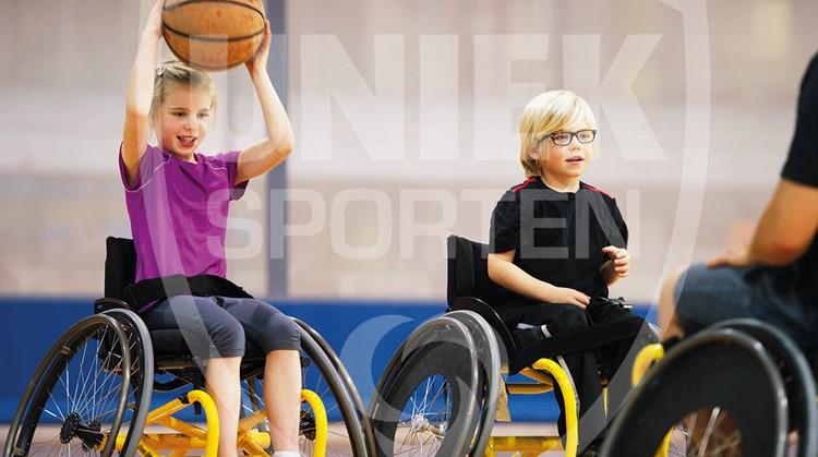 Onderzoek: Sport- en beweeggedrag van actieve mensen met een beperking afbeelding nieuwsbericht