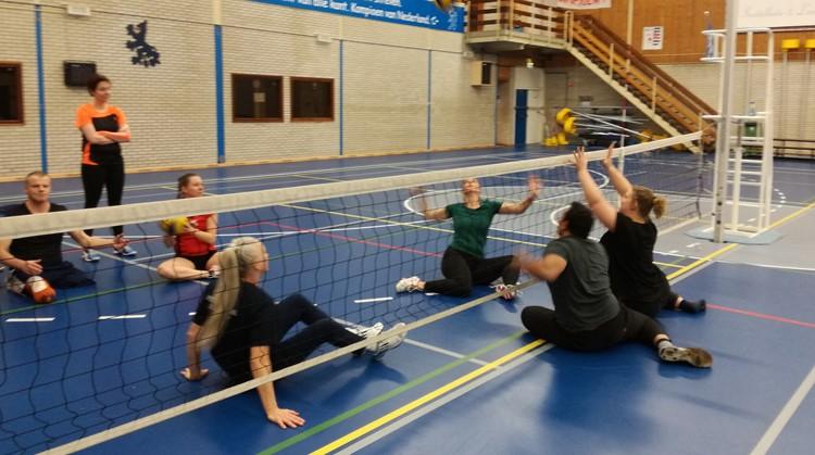 2e open training zitvolleybal bij VV Amsterdam afbeelding nieuwsbericht