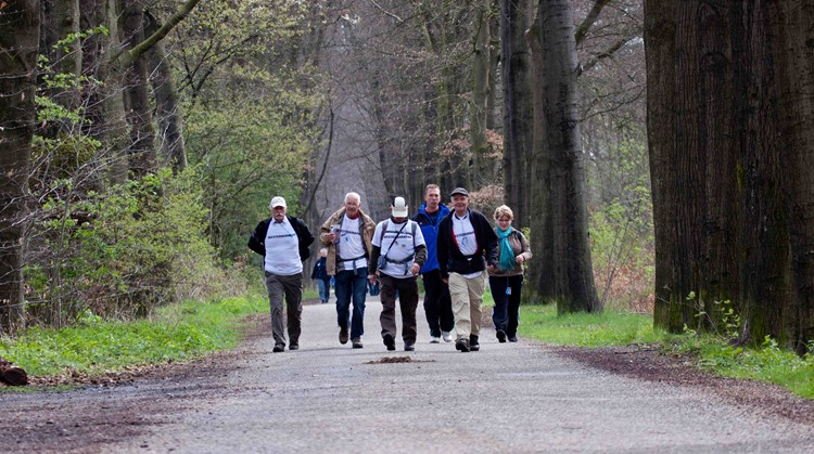 Overbetuwe wandelt mee met de wandel3daagse Special Olympics afbeelding nieuwsbericht