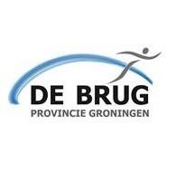De Brug provincie Groningen kampioenschappen zwemmen afbeelding nieuwsbericht