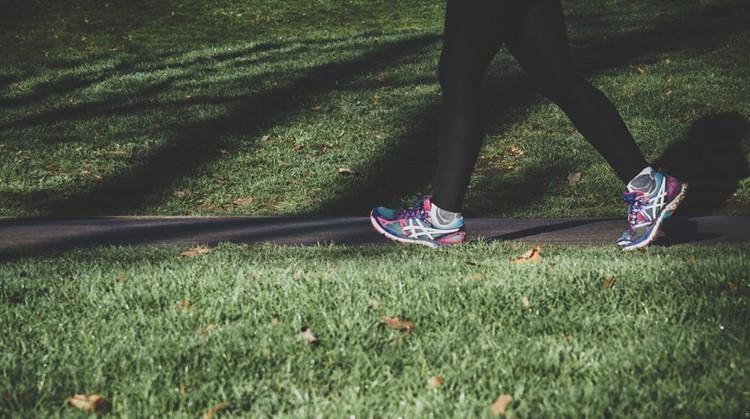 Op stap in Park Presikhaaf met wandelaars met een psychiatrische aandoening afbeelding nieuwsbericht