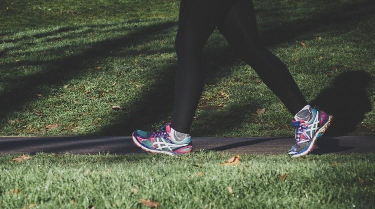 Wandel, fiets of step een etappe van het pieterpad voor onderzoek naar hersentumoren op 12 september afbeelding nieuwsbericht